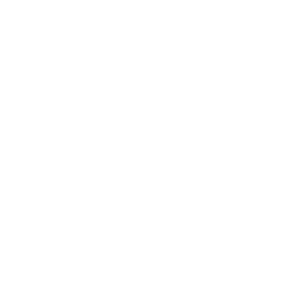 Custom Website Design Logo